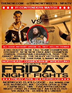 FRIDAY NIGHT FIGHTS FLYER