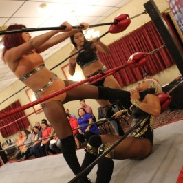 total womens tag